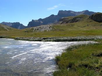 Un des lacs du col Néal, dans la sagne (Arvieux en Queyras - Hautes Alpes)