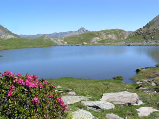 Lac Baricle near Ristolas