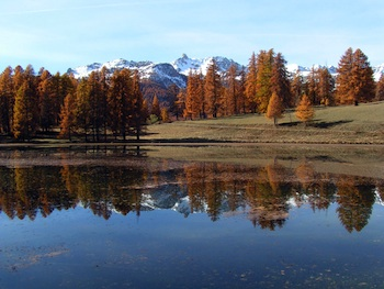 Lac de Roue near Arvieux in autumn. In the distance the Pic de Rochebrune.