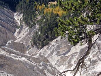 La géologie sur le terrain : gypse du ravin de la Ruine blanche à Château-Ville-Vieille
