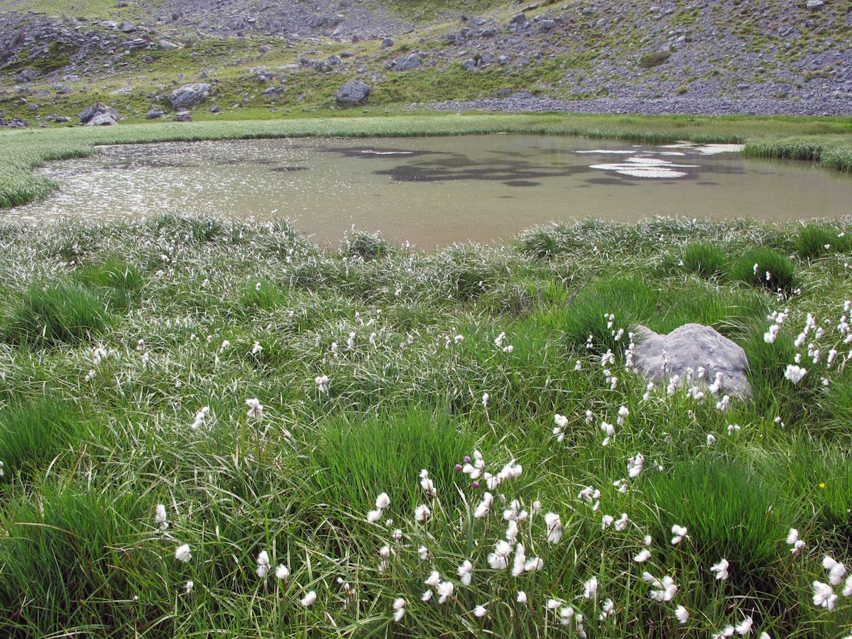 Lac de la Valette à Arvieux