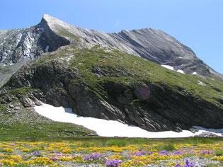 La crête de la Taillante à Ristolas. Cette montagne est décrite comme étant un mille-feuilles de marbre clair