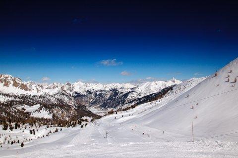 Dominio alpino