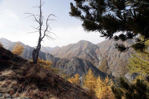 Montagnes du Queyras (Hautes Alpes)