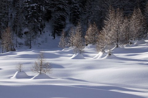 Campo di neve nel Queyras
