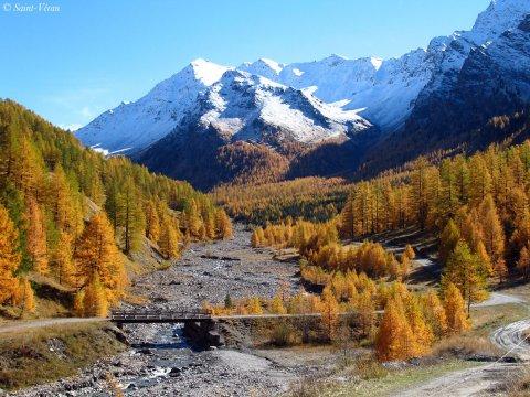 Automne à Saint-Véran (Queyras, Hautes Alpes)