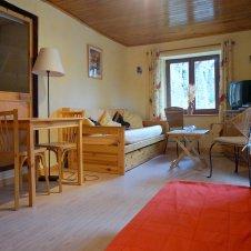 Salon de l'appartement Ancolie